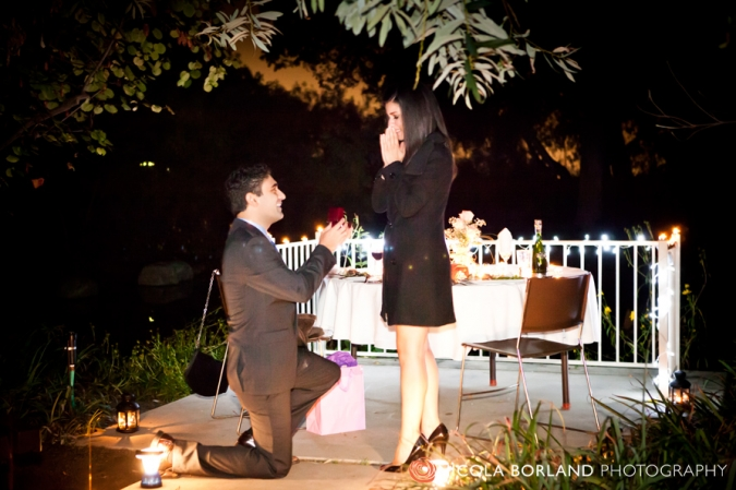 Rancho Santa Ana Botanic Garden Engagement Proposal {Silva And Shant} »  Nicola Borland Photography