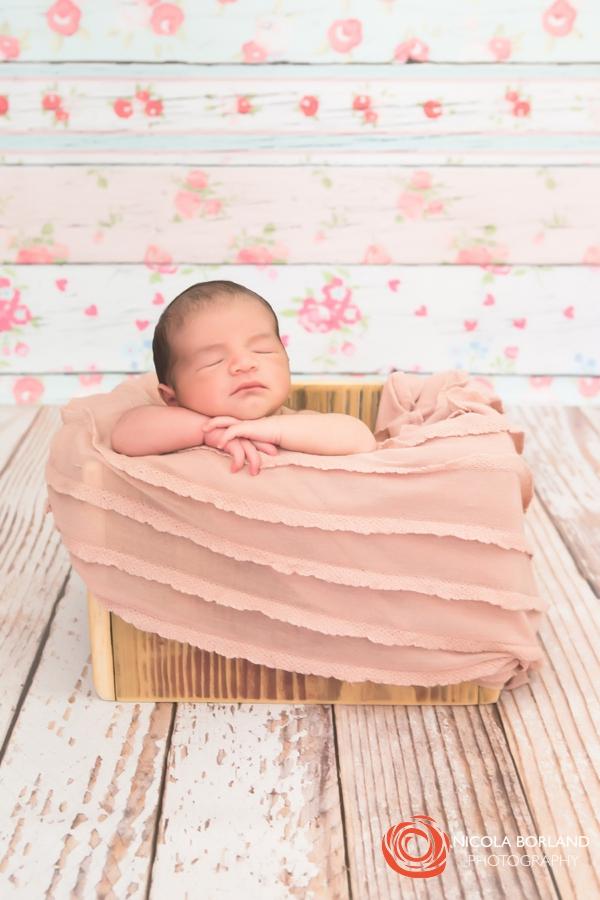 Pasadena newborn girl 02